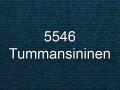 5546.jpg