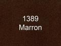 1389.jpg